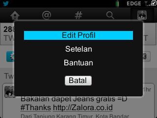 EDit PRofil Twitter