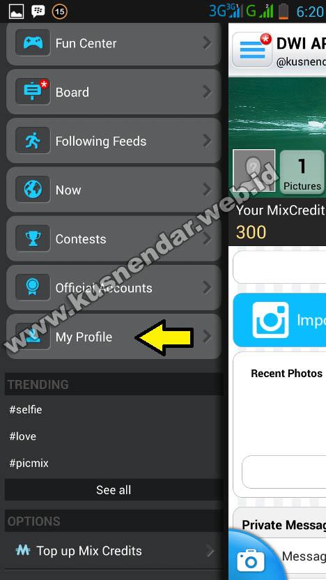 menu profil picmix