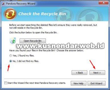 tutorial Menggunakan Pandora Recovery_3
