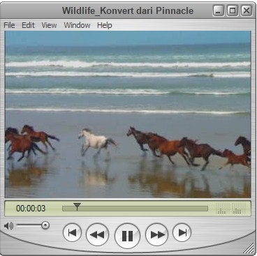 Play Video di QuickTime Player