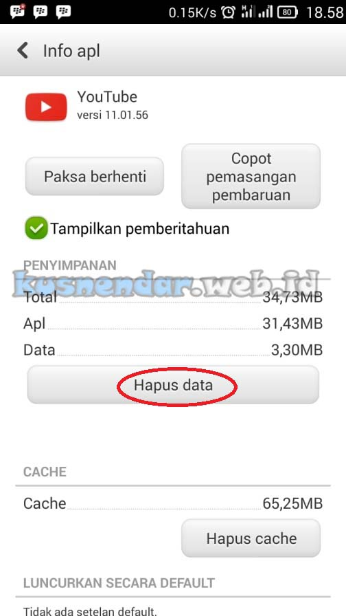 Clear Data APlikasi YouTube