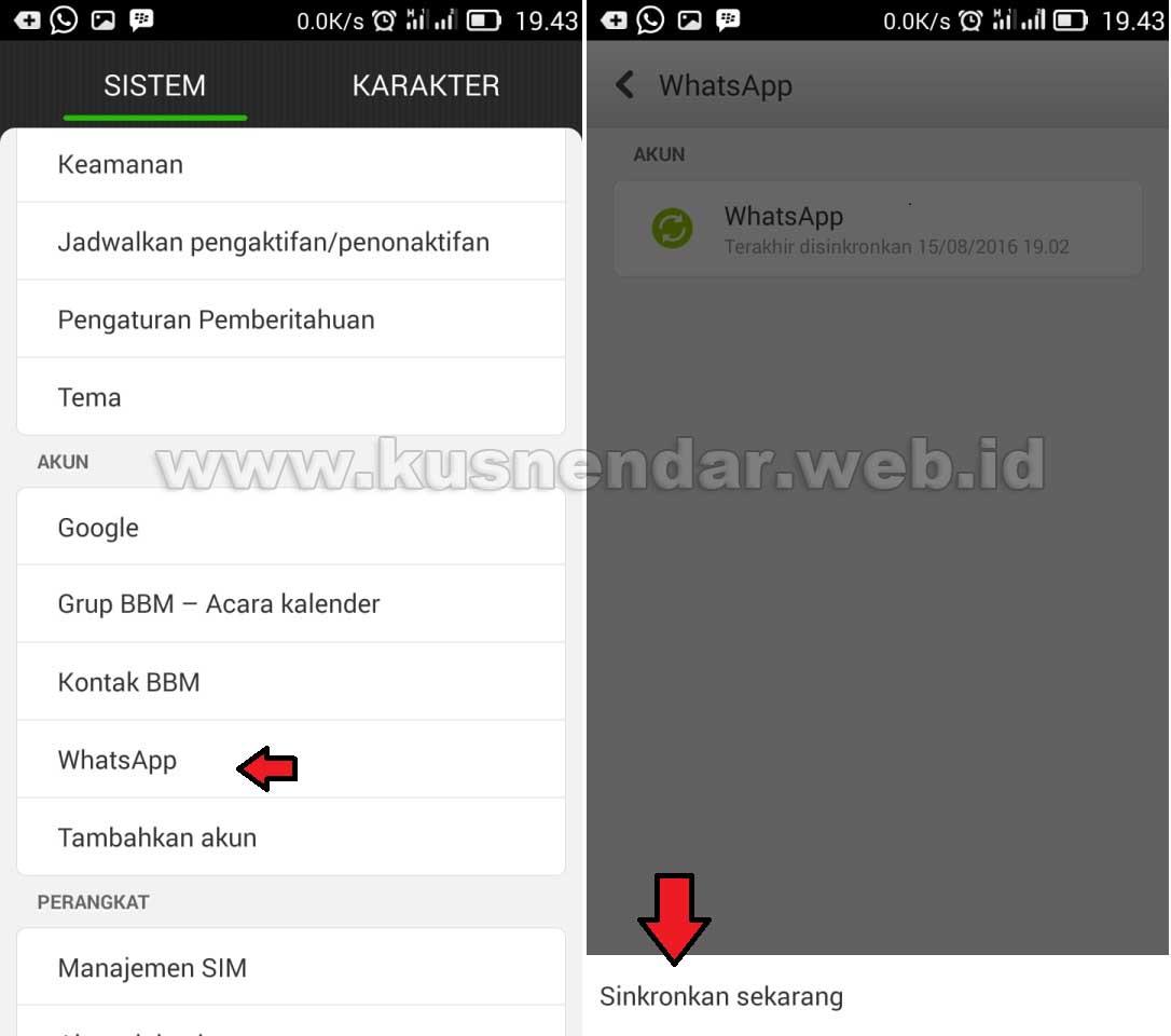Sinkron Whatsapp